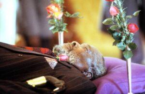 'Bury Jomo Kenyatta In Kiambu', Kenyans Tell State