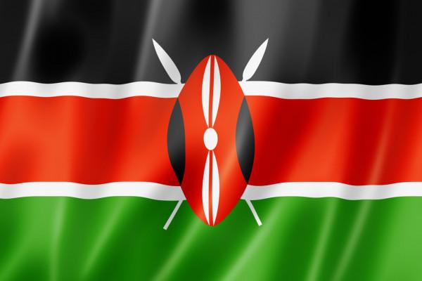 Kenya sets aside Sh1.2 billion for UNSC office